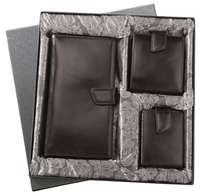Набор Alvaro: футляр для кредиток, органайзер, портмоне, черный